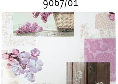 9067-01